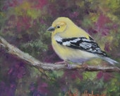 Yellow Warbler Bird Art Painting,Animal,Original Canvas Oil Painting by Cheri Wollenberg