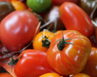 Pineapple Tomato Seeds Organic
