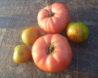 Brandywine Pink Tomato Seeds Organic