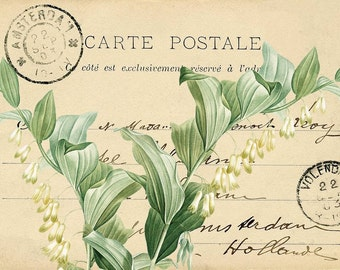 Digital Image French Floral Postcard You Print Digital Collage Romantic Red Green