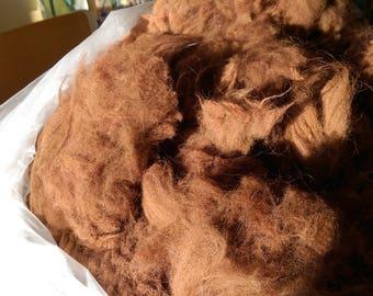 Prime Alpaca Fiber (fleece)--Brown