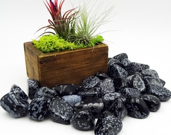 Tumbled Stones By the Ounce - SNOWFLAKE OBSIDIAN -(Ai)