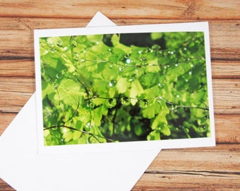 Water Droplets Greeting Card 4x6' with handmade envelope  - Greeting Card - Photo card - Thank you card