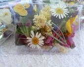 Wedding Flower Confetti, Dry Flowers, 1 Pre-filled Clear Box, Dry Lilacs, Dry  Lavender, Dry Rose Leaf, Dry Petal Confetti,  1 Wedding Favor