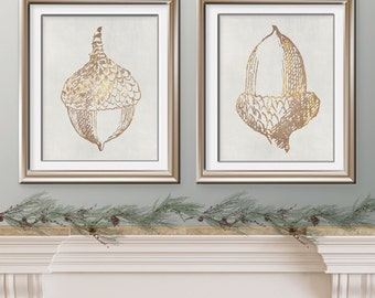 Acorn Harvest Collection (Series B) - Set of 2 Art Prints - (Featured in Golden Impression on Pale Stone Wash) Woodland Art Prints / Posters
