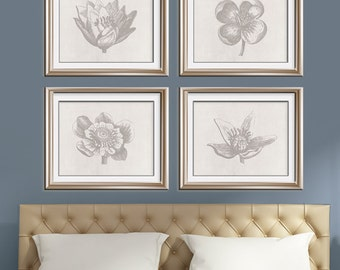 Botanical Flower Bud (Series B - Horizontal) Set of 4 Art Poster Prints (Featured in Dolphin Grey on Silk Gown)