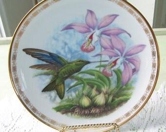 The Hamilton Collections Great Sapphirewing  Hummingbird Plate, From The Jeweled Hummingbirds, Wall Decor, Aviary, Artist J.F. Landenberoer