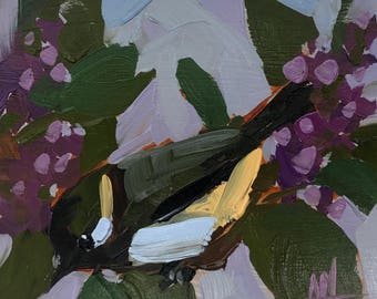 Chickadee no. 928 Original Bird Oil Painting by Angela Moulton 6 x 6 inches pre-order