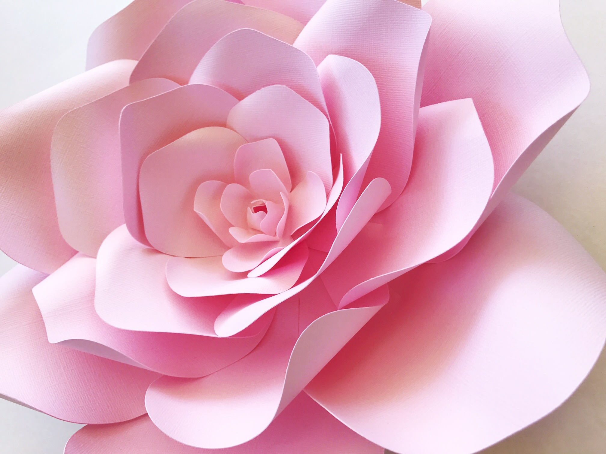 Diy Wall Flowers: Paper Flower Template, Paper Flower Wall, DIY Paper Flower
