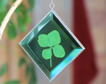 Genuine Four Leaf Clover Glass Suncatcher Green St. Patrick's Day Ornament One of a Kind Botanical Gift Idea Made in Canada