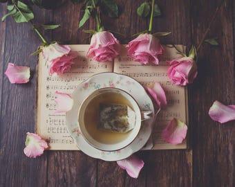 Roses & Petals ~ 8x10 photo print