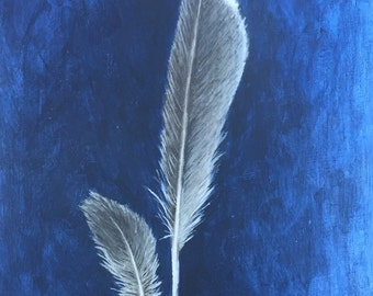 Grey and White Bird Feathers