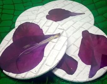 4 pressed gladiolus drink coasters