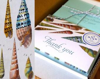 Seashell Thank You Cards, Nautical Stationery, Boho Thank You Notes, Shell Notecards, Tropical Thank You Cards, Beach Thank You, Set of 8