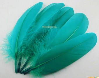 50 Pieces Turquoise Green Feather 14-20cm (YM352)