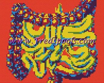 Contemporary Cross Stitch Kit,  Intestines,  Human Body,  Needelecraft, Cross Sticth Kit, Modern Cross stitch, R#Colorful Stitching, Anatomy
