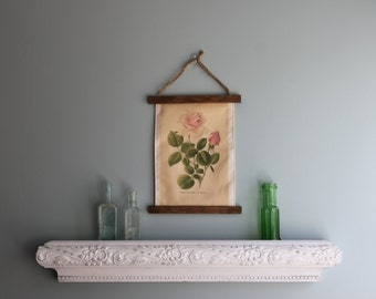 Botanical Rose Picture, Printed on Canvas, Naturalist Decor