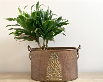 Vintage Brass Planter Pineapple Applique Indoor Decorative Metal Double Planter Elephant Head Handles