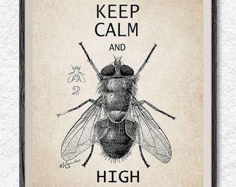 Keep calm and fly high, fly print, keep calm print, wall art, poster