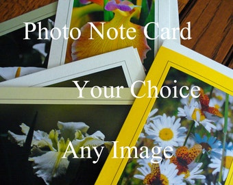 Any Image, Your Choice, Eco-Friendly All Occasion, Blank Card, Photo Note Card Nature Landscape Bridge Butterfly Bird Ocean Sunset Flower,