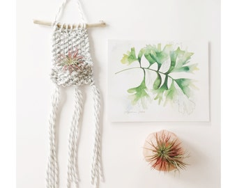 AIRPLANT WALL HANGING in Light Grey - mini - Air Planter - Knitted Wall Hanging with Airplant, Bohemian Home Decor, Hanging Airplant Display
