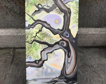 Oak of The Bayou, 2017