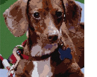 Needlepoint Kit or Canvas: Dachshund Posing
