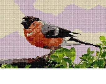 Needlepoint Kit or Canvas: Bullfinch Pyrrhula Bird