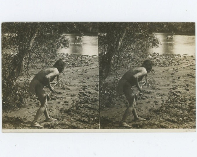 Vintage Stereoscopic Photo: Hunter with Rifle Stalks Deer (610514 )