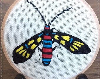 Embroidered insect ornament. Euchromia polymena- moth.