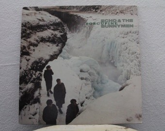 "Echo and The Bunnymen - ""Porcupine"" vinyl record"