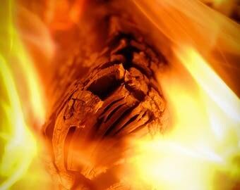 Fire, Campfire, Botanical Photography, Landscape Photography, Nature Photography, Fine Art, Made in USA, Wall Art, Room Decor