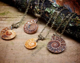Fossil Jewellery Polished Ammonite Fossil Necklaces on Long Bronze Chain Necklace Gift Nature Natural Jewellery Necklace Madagascar Ammonite