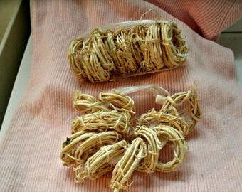 """24 tiny BLEACHED GRAPEVINE WREATHS 2"""" craft supplies small"""