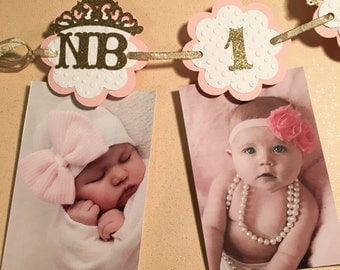 Princess 12 month photo banner,first birthday,Baby shower,princess theme newborn to one year Baby girl Princess,Pink Gold picture banner