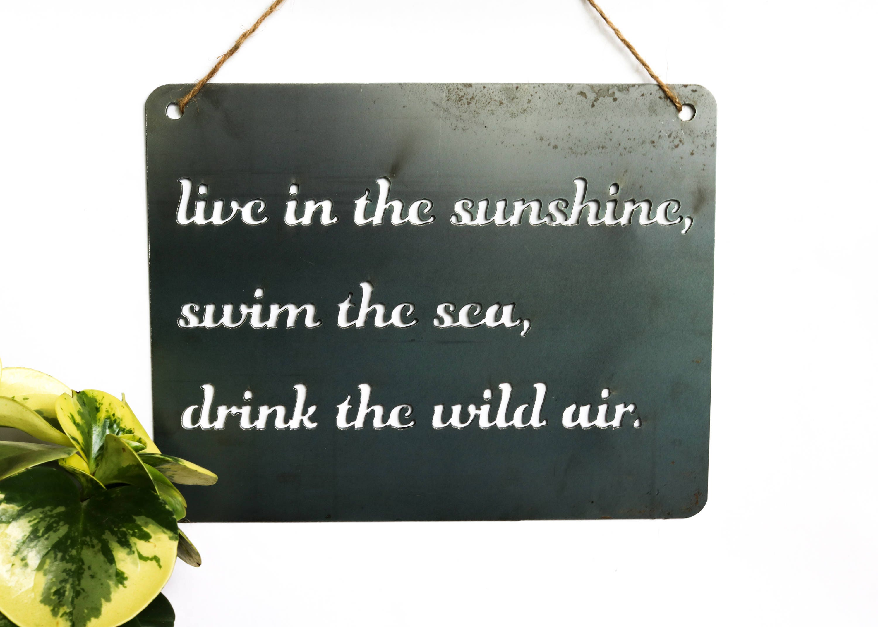 Live In The Sunshine Swim The Sea Drink The Wild Air Metal