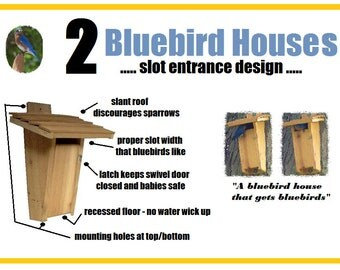 Ark Workshop: 2 PACK Slot Bluebird House Birdhouse box proven for bluebird success & sparrow resistant