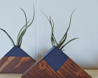 Large Wooden Pyramid Air Plant Holder w/ Air Plant