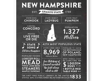 State Print, New Hampshire State, New Hampshire Map, State Art, State Poster, State Infographic, Gift For Brother, State Facts