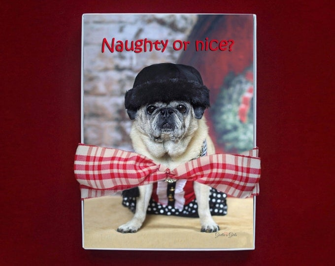 BOXED HOLIDAY Cards - Pug Holiday Cards - 5x7 - Naughty or Nice