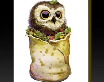 Owl In A Burrito Greeting Card