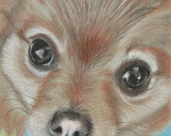 Pomeranian Painting Print - Acrylic Creative Art - Wall Art - Dog Painting Drawing - Realistic - Home Decor - © not included at top - Mysti