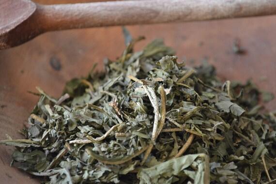 Organic Dandelion Herb Taraxacum Officinalis Dried