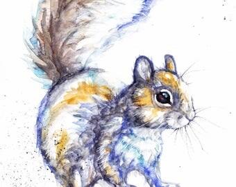 Original Watercolour Grey Squirrel Print by Artist Be Coventry Wildlife Animal Art