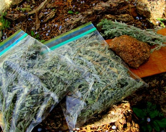 Artemisia tridentata~ First Of The Season Young Sprouts~Fresh Nevada Sagebrush Smudge~3 oz. Bag~Ceremonial Air Purification~Native Smudge
