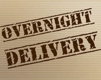 Overnight UPS Delivery Upgrade - USA Only