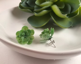 Succulent Earrings, Stud Earrings, Plant Earrings, Succulent Stud Earrings, Unique Earrings, Stocking Stuffer, Gifts for her,jewelry for her