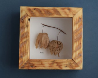 Physalis - Paper seed pod sculpture