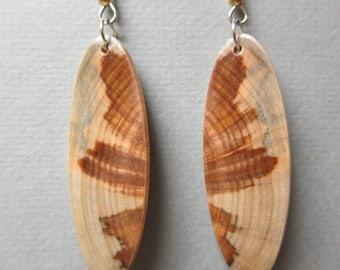 Glowing Norfolk Island Pine Exotic Wood Earrings, ExoticWoodJewelryAnd Butterfly wings Hypoallergenic wires