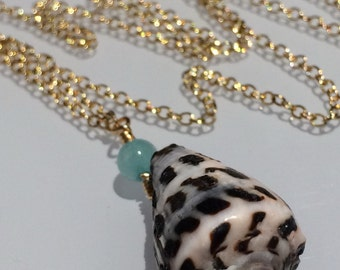 "17"" 14kgf Hebrew Cone Shell and Amazonite Necklace"